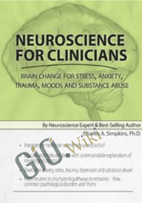 Neuroscience for Clinicians: Brain Change for Stress, Anxiety, Trauma, Moods and Substance Abuse - Charles A Simpkins, PH.D.
