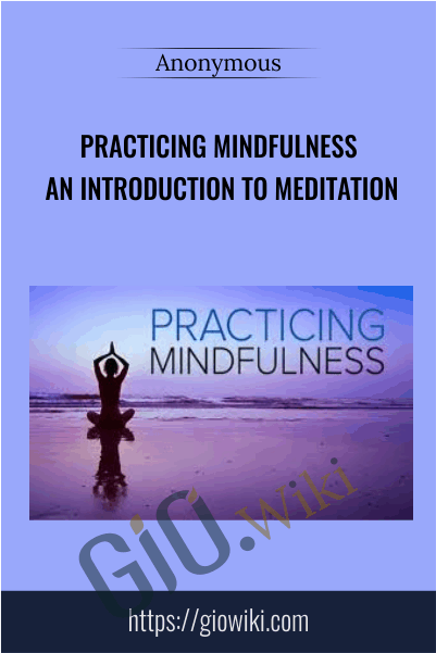Practicing Mindfulness An Introduction to Meditation