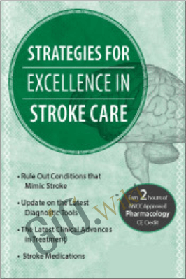 Strategies for Excellence in Stroke Care - Cedric McKoy