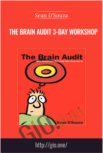 The Brain Audit 3-Day Workshop – Sean D'Souza