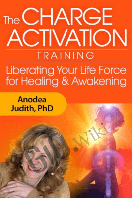 The Charge Activation Training - Anodea Judith