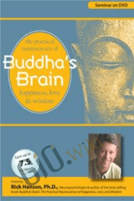 Buddha's Brain: The Practical Neuroscience of Happiness, Love and Wisdom - Rick Hanson