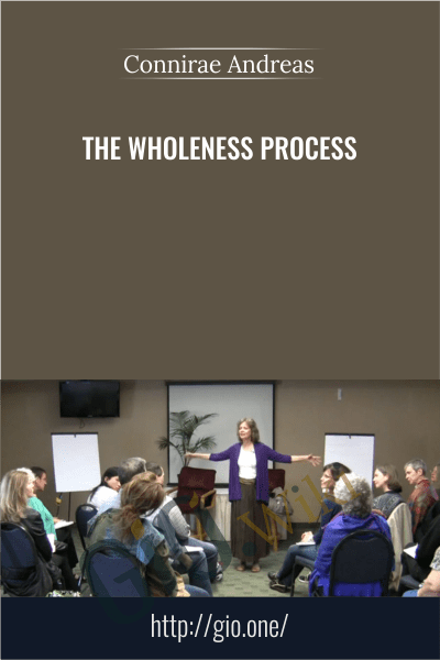 The Wholeness Process - Connirae Andreas
