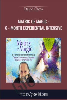Matric of Magic - 6 - Month Experiential Intensive - David Crow