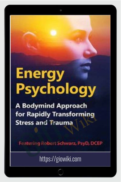 Energy Psychology: A Bodymind Approach for Rapidly Transforming Stress and Trauma - Robert Schwarz