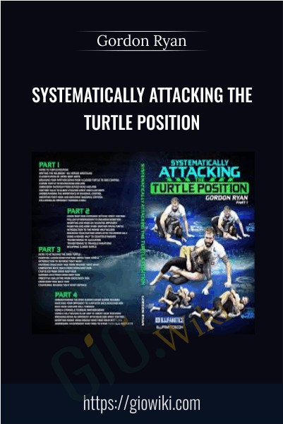 Systematically Attacking the Turtle Position - Gordon Ryan