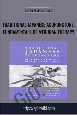 Traditional Japanese Acupuncture: Fundamentals of Meridian Therapy - Koei Kuwahara