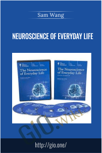Neuroscience of Everyday Life – Sam Wang