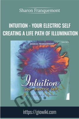Intuition - Your Electric Self Creating A Life Path of Illumination - Sharon Franquemont