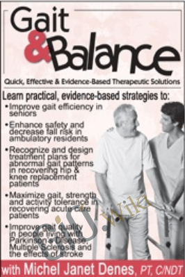 Gait & Balance: Quick, Effective & Evidence-Based Therapeutic Solutions - Michel Janet (Shelly) Denes