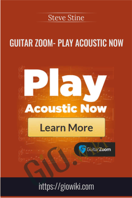 Guitar Zoom- Play Acoustic Now - Steve Stine