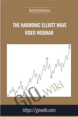 The Harmonic Elliott Wave Video Webinar - Anonymous