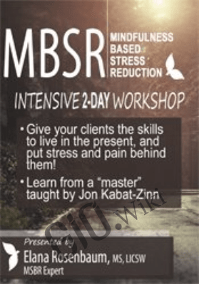 2-Day Certificate Course: MBSR: Mindfulness Based Stress Reduction - Elana Rosenbaum