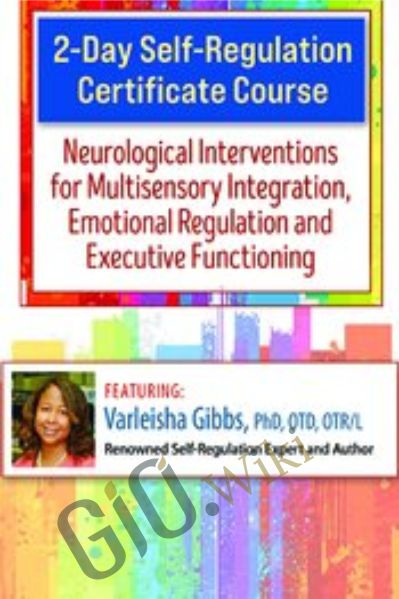 2-Day Self-Regulation Certificate Course: Neurological Interventions for Multisensory Integration, Emotional Regulation and Executive Functioning - Varleisha D. Gibbs