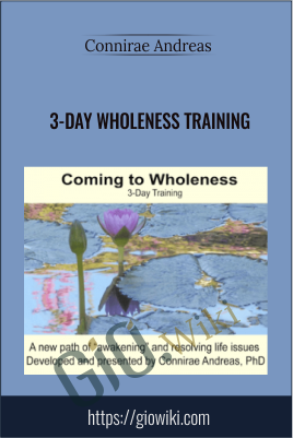 3-day Wholeness Training - Connirae Andreas