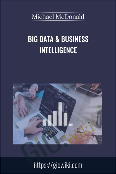 Big Data & Business Intelligence - Michael McDonald