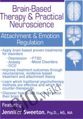 Brain-Based Therapy & Practical Neuroscience: Attachment & Emotion Regulation - Jennifer Sweeton