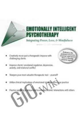 Emotionally Intelligent Psychotherapy: Integrating Power, Love, & Mindfulness - Sam Alibrando
