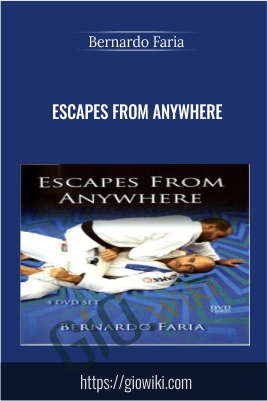 Escapes From Anywhere - Bernardo Faria