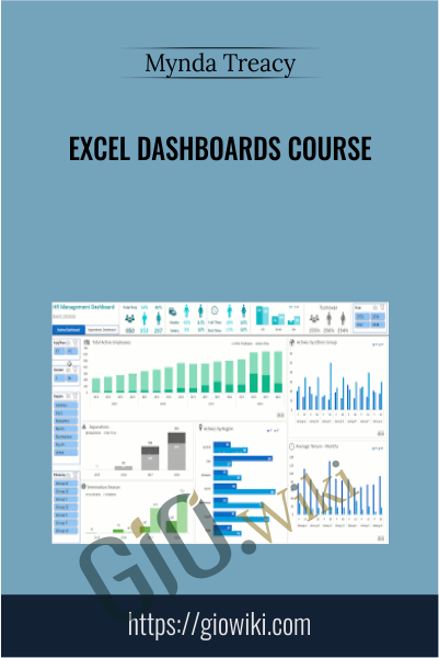 Excel Dashboards Course - Mynda Treacy
