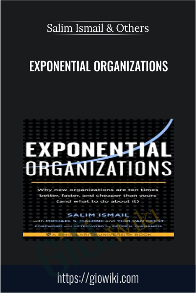 Exponential Organizations - Salim Ismail & Others