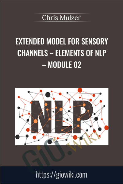 Extended Model for Sensory Channels – Elements of NLP – Module 02 - Chris Mulzer