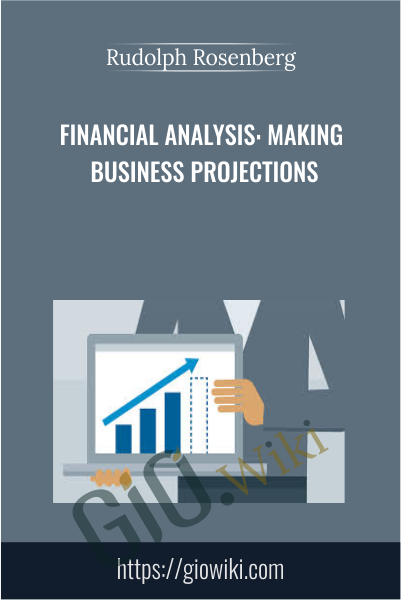 Financial Analysis: Making Business Projections - Rudolph Rosenberg
