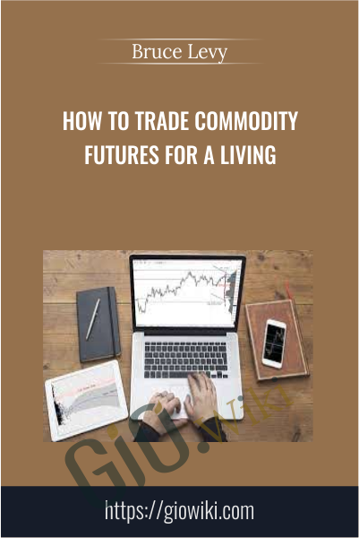 How To Trade Commodity Futures for a Living - Bruce Levy
