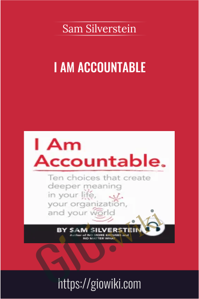I Am Accountable - Sam Silverstein