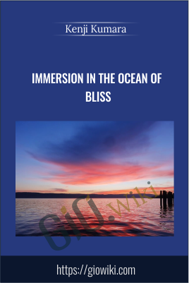 Immersion in the ocean of bliss - Kenji Kumara