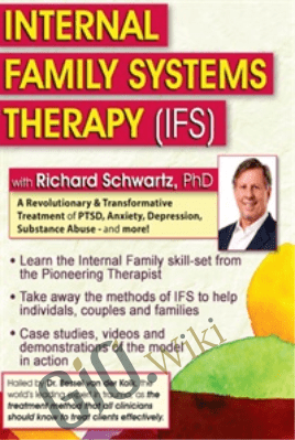 Internal Family Systems Therapy (IFS): A Revolutionary & Transformative Treatment of PTSD, Anxiety, Depression, Substance Abuse - and More! - Richard C. Schwartz