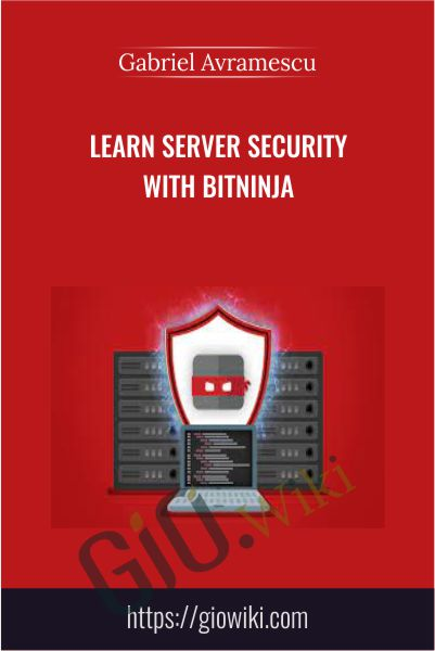 Learn Server Security With BitNinja - Gabriel Avramescu