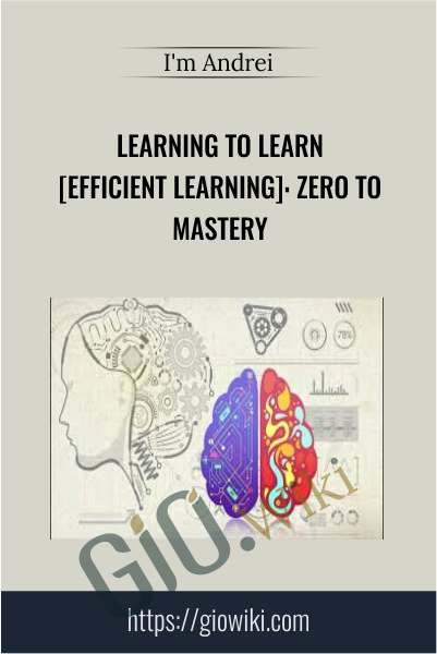 Learning to Learn [Efficient Learning]: Zero to Mastery -  I'm Andrei