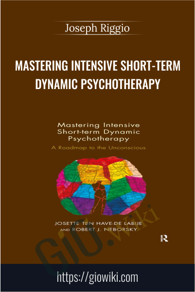 Mastering Intensive Short-Term Dynamic Psychotherapy - Josette Ten Have-De Labije & Robert J. Neborsky