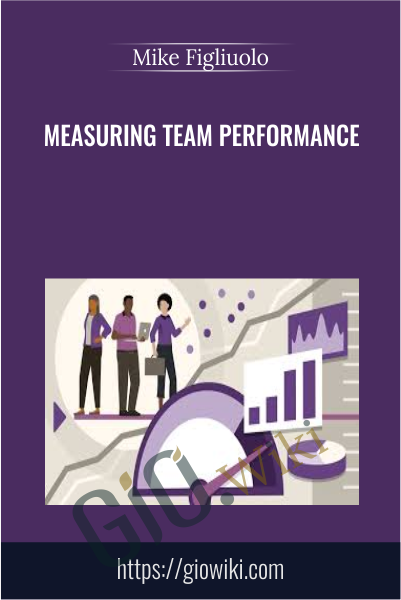 Measuring Team Performance - Mike Figliuolo
