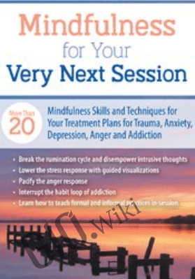 Mindfulness For Your Very Next Session: More Than 20 Mindfulness Skills and Techniques for Your Treatment Plans for Trauma, Anxiety, Depression, Anger, and Addiction - Jason Murphy