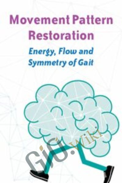 Movement Pattern Restoration: Energy, Flow and Symmetry of Gait - Michel (Shelly) Denes