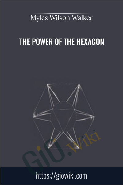 The Power of the Hexagon - Myles Wilson Walker