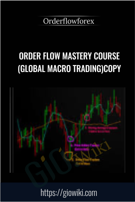 Order Flow Mastery Course (Global Macro Trading) Copy - Orderflowforex
