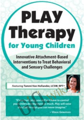 Play Therapy for Young Children: Innovative Attachment-Based Interventions to Treat Behavioral and Sensory Challenges - Tammi Van Hollander