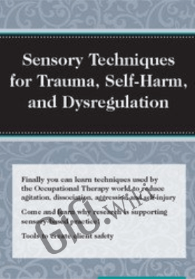 Sensory Techniques for Trauma, Self-Harm, and Dysregulation - Brooke Wimer