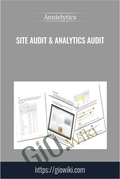 Site Audit & Analytics Audit - Annielytics
