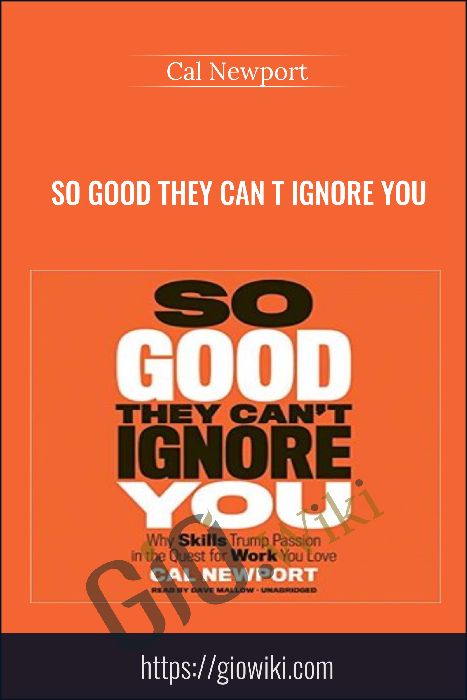 So Good They Can t Ignore You - Cal Newport