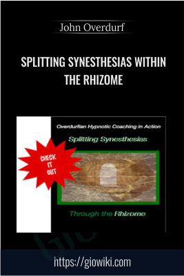 Splitting Synesthesias within the Rhizome - John Overdurf