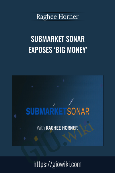 Submarket Sonar Exposes 'Big Money' - Raghee Horner