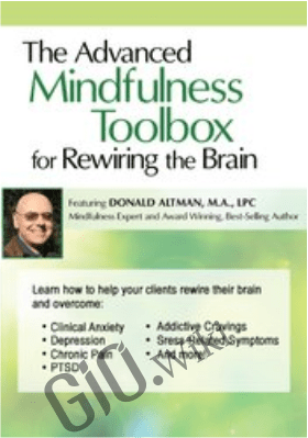 The Advanced Mindfulness Toolbox for Rewiring the Brain: Intensive 2-Day Mindfulness Training for Anxiety, Depression, Pain, PTSD, and Stress-Related Symptoms - Donald Altman