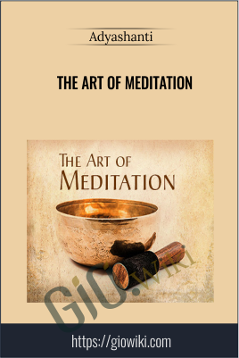 The Art of Meditation - Adyashanti