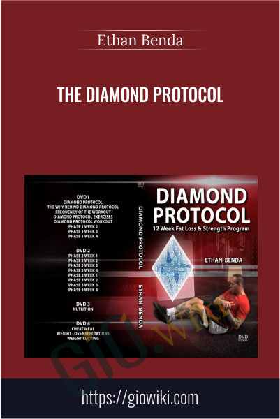 The Diamond Protocol  - Ethan Benda