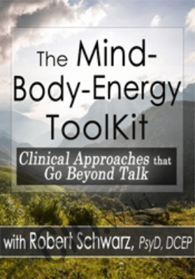 The Mind-Body-Energy ToolKit: Clinical Approaches that Go Beyond Talk -  Robert Schwarz