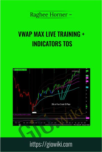 VWAP Max Live Training + Indicators ToS - Raghee Horner